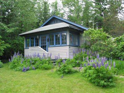 Photo for Cozy Historic Cabin Walk/Bike to Town Nestled  in the Woods Year 'Round Retreat