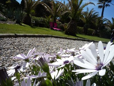 Photo for Garden-conditioned studio for 4 people. Peninsula Giens- beach at 30m