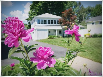 Photo for Carriage House Studio with Beautiful Pool in the Heart of Ogunquit