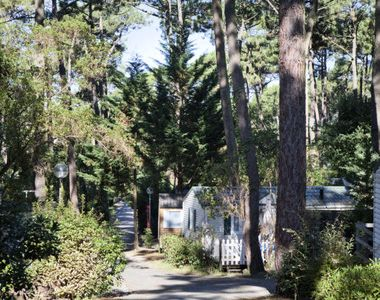 Photo for Camping Arcachon Nature - Prestige 3 room mobile home 4 people