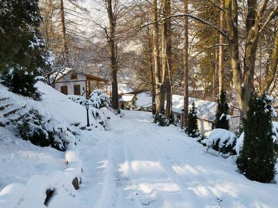 Photo for An idyllic and peaceful place to stay surrounded by woodlands and nature.