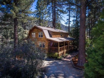 Photo for Authentic Log Cabin, private getaway, nestled in the pines with lake view