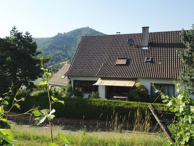 """Photo for FURNISHED HOLIDAYS: """"IN THE VINES"""" in RIBEAUVILLÉ"""