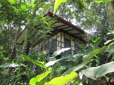 Casa Selva in its jungle setting.