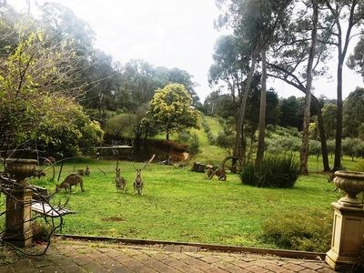 Photo for COUNTRYSIDE Spa COTTAGE Daylesford-Hepburn  7acres dams olive grove +kangaroos