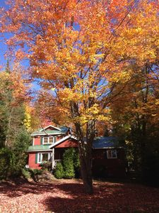 Photo for Brookside Cottage/Sprawling Wooded Retreat Within Town. Sleeps 8-10