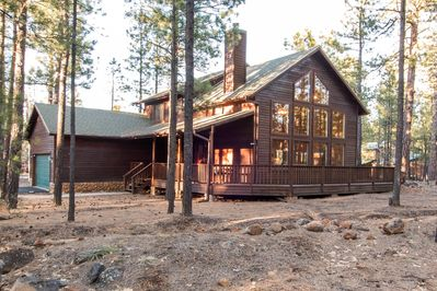 Cabin surrounded by tall ponderosa pines