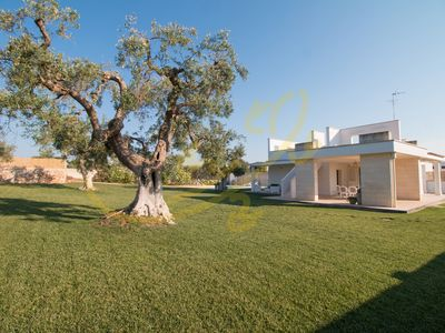 Photo for VILLA PATRIZIA - Villa for 6 people in Monopoli