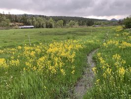 Photo for 2BR House Vacation Rental in Chromo, Colorado