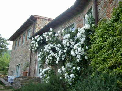 Photo for Charming stay at La Volpe