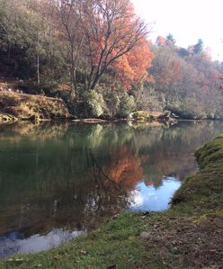 Beautifully located on the lower Toccoa River.