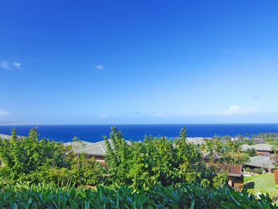 Photo for Large lanai and grass area with ocean views, make for the perfect sunning space!