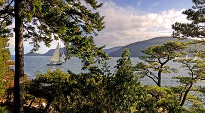 Photo for Northeast Harbor, Somes Sound Waterfront, Acadia National Park