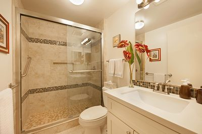 Completely renovated bathroom, with walk-in shower, custom Quartz vanity