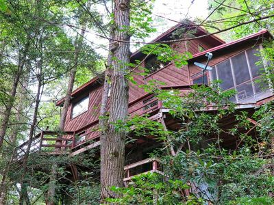 Photo for Pigeon River Hideaway on the Little Pigeon River, Smoky Mountains