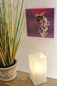 Photo for 018-03 (Room category) - Haus Hooge