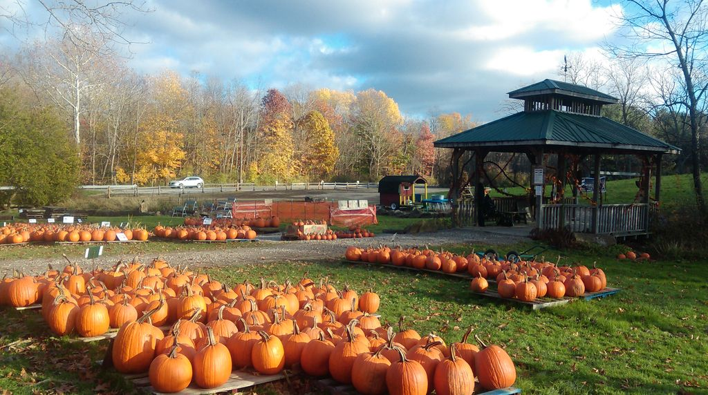 5th Generation Family Farm Located In the CVNP Minutes From Cleveland And Akron