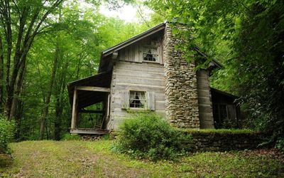 Photo for Luxe Cabin on Cascading Stream - Private Hiking Trails - Fireplace - WiFi