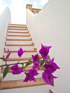 """Photo for """"Casa Stefano"""" Mallorca, quiet location and only 2.5km from the beach """"EsTrenc"""" away"""
