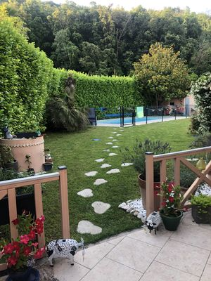Photo for Villa with large plot and swimming pool, ideal for family, between Grasse and Cannes