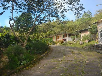Photo for RANCHO SANTA ANA IS A COFFEE PLANTATION LOCATED BETWEEN 1000 AND 1200 METERS ABOVE SEA LEVEL AND WITH A CLIMATE DURING THE NIGHT BELOW 72 F       INSTAGRAM:  RANCHO SANTA ANA MATAGALPA