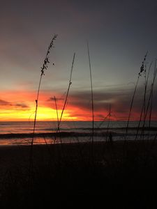 Photo for Sunset Cottage, Manasota Key, Two minute walk to beautiful Gulf of Mexico beach!