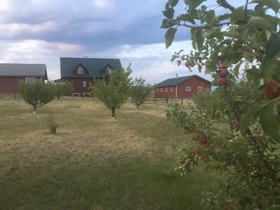 A peaceful log home in a ranch setting - on site orchard for fresh apple cobbler