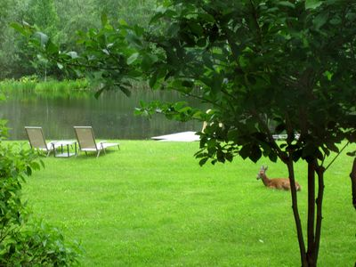Photo for Private  Romantic Cottage on  a  7 Acre Estate- Swimming Pond, Gardens, View