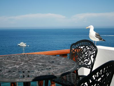 Photo for Hamilton Cove ocean front luxury Villa ***Spectacular Views***