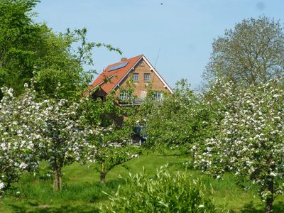Photo for 2BR Apartment Vacation Rental in Drochtersen