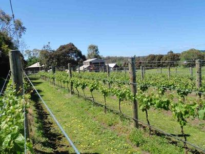 Photo for BARN & BOATSHED STAY AT THE VINES MT MARTHA