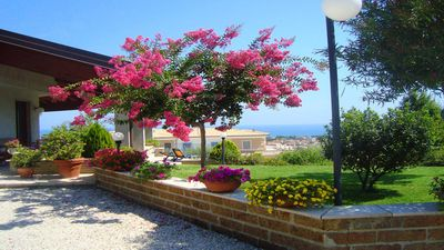Photo for Apartment in Villa sea view: garden, very cool, sheltered.