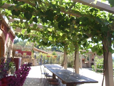 Vine covered gazebo with dinning table perfect for alfresco dining