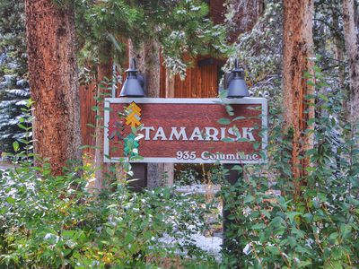 Welcome to Tamarisk Condos