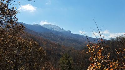 Photo for Spectacular Grandfather Mountain  Views from three levels, centrally located