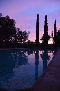 Photo for Idyllic Secluded Provençal Villa in Protected Park Land