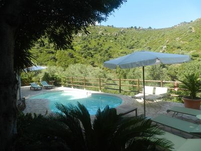 Photo for Villa in Collioure with pool in the middle of vineyards with mountain views