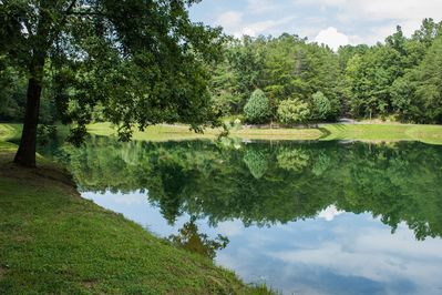6 acre catch and release fishing lake is a short walk from the cabin