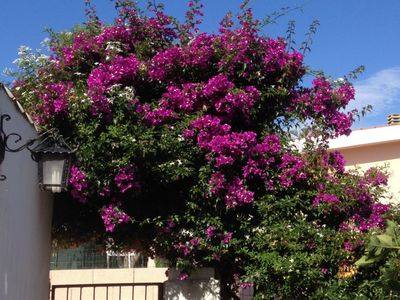 Photo for 3BR House Vacation Rental in San Giovanni, Sardegna