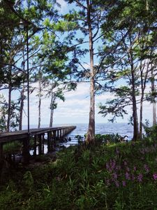 Photo for Scenic Hideaway on the St. Johns River