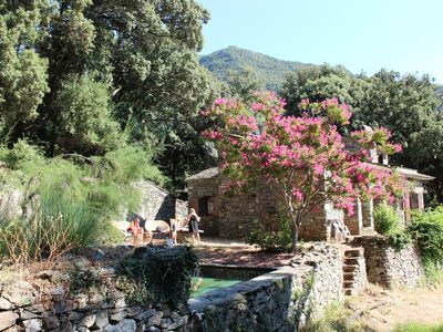 Photo for The ajola, a haven of peace in the Cap Corse.