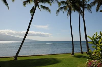 Watch the whales from the huge private lanai, lounge chairs, dining area