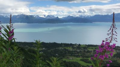 Photo for The Nest...  Panoramic View of Kachemak Bay!