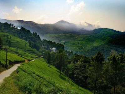 Photo for Linten Holiday Resort, Property set in Munnar.4.7km from MUNNAR Town