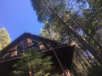 Photo for YOSEMITE Sugar Pine Cabin, 7 Miles To The South Entrance Of The Park.