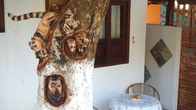 Photo for Pontal dos Sonhos- Chalet Beach Tree