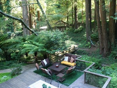 Photo for Nestled in the Redwoods, Easy Walk Downtown, Close to SF and Wine Country