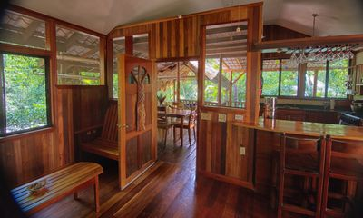Our home for rent in Belize is surrounded by rainforest.