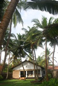 The 3BR Beach House In Hikkaduwa