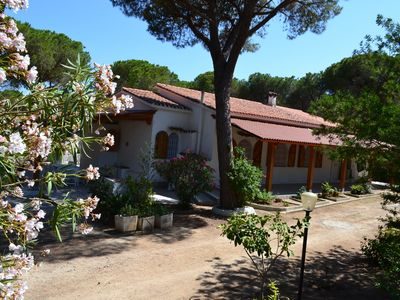 Photo for Single villa immersed in a pine forest of 13000sqm Santa Margherita